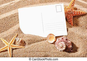 postcard on a beach - holiday beach concept with shells, sea...