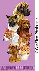 Postcard with dogs of different breeds-8 - Vertical postcard...