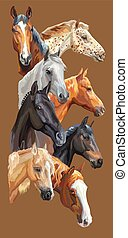 Postcard with horses-2 - Vertical postcard with portraits of...