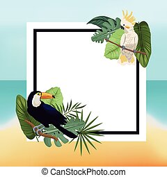 poster tropical leaves palm beach background