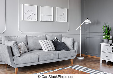 Posters above grey sofa with pillows in living room interior with lamp and plant on cabinet. Real photo