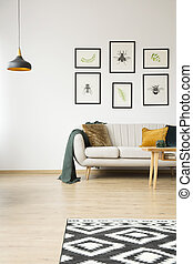 Posters in bright living room