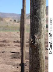 postes, alineados