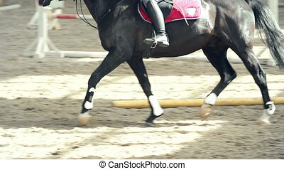 Posting While Trotting - Camera following the horseman...