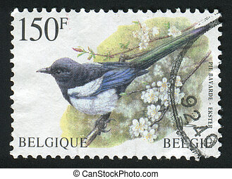 postmark - BELGIUM - CIRCA 1986: The bird sits on a...