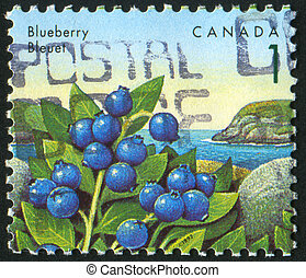postmark - CANADA - CIRCA 1991: stamp printed by Canada,...