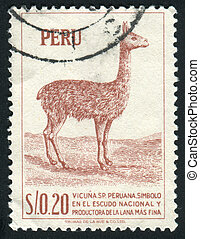 PERU - CIRCA 1979: llama is a South American camelid, widely used as a pack and meat animal by Andean cultures since pre-hispanic times, circa 1979.