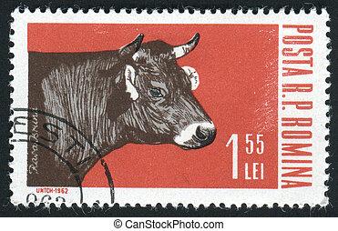 postmark - ROMANIA - CIRCA 1962: Industrial cultivation of...