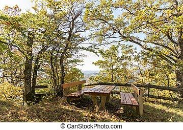 posto, confortevole, foresta, riposare