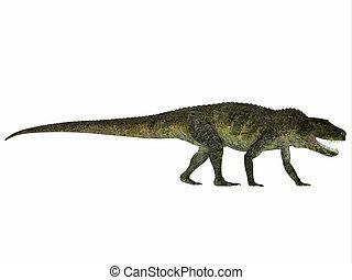 Postosuchus Reptile Profile