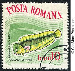 poststamp fish