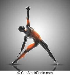 postura, triángulo, 3d, figura, macho