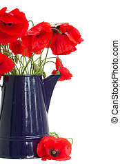 posy of poppy flowers in blue pot cloe up isolated on white background