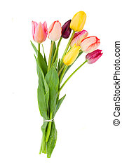 Posy of tulips flowers - Posy of spring tulips flowers...