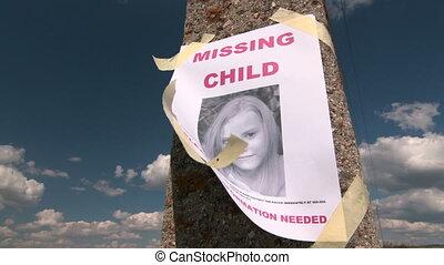 poszter, gyermek, fénykép, személy, elveszett