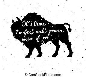 poszter, vektor, bison.