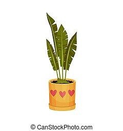 pot., houseplant, illustration, arrière-plan., vecteur, orange, blanc