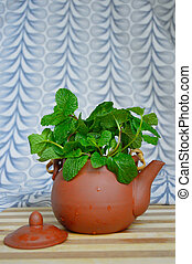 Pot of fresh mint