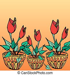 Pot plants with red flowers
