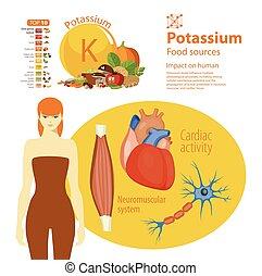 Potassium. - Infographics. Potassium. Food sources and...