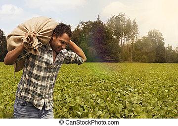 Potato farmer at potato plantation with copyspace