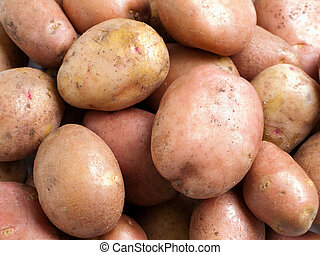 Potato food - Healthy eating vegetable food - potato...