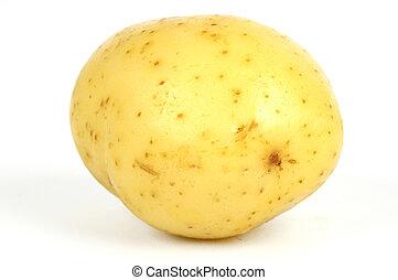 Potato - one potato isolate on a white background