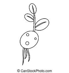 Potato seed icon, outline style