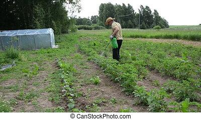 potato spray worker