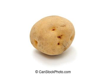 potato - studio shot of fresh food on white background