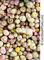 Various types of potatoes for sale at the outdoor food market in Cotacachi, Ecuador
