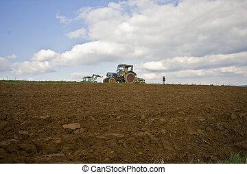 Potatoe harvesting