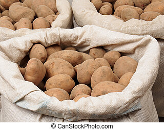 Bags with potatoes isolated on white background