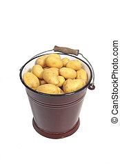 Potatoes in a bucket