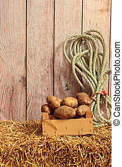 potatoes in wood box with rope on hay
