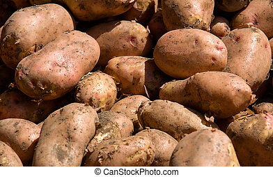 potatoes on the market as a background