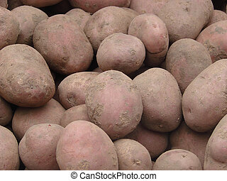 potatoes on the market for sale as a background. Selective focus