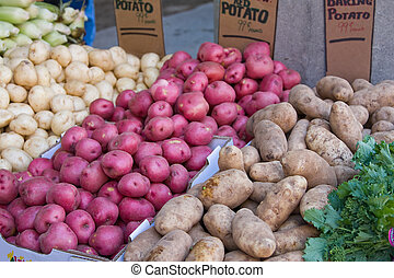 Potatoes - Variety of red, baking and Idaho potatoes in a...