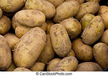 Potatos - Brown Fresh Potatos in a Big Pile