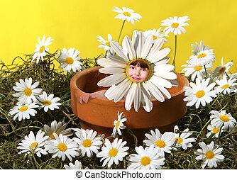 pote, flores, sentando