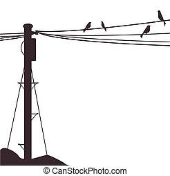 poteau, télégraphe, oiseaux
