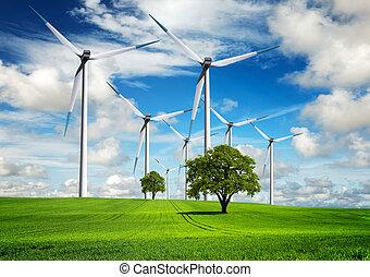 potere, e, ecologia, in, il, natura