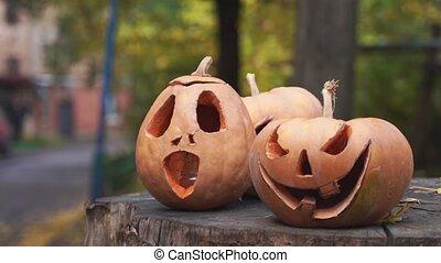 potirons, pumpkin., outdoors., heureux, découpé, cru, halloween