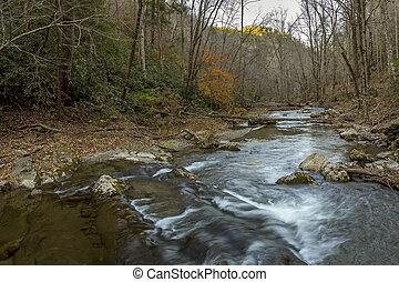 potok, -, meandrowy, tennessee, przez, las