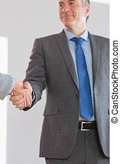 potrząsająca ręka, zadowolony, biznesmen