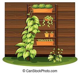 pots fleurs, jardinage, scène, étagères