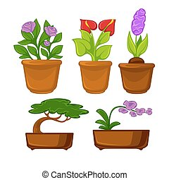 Pots plants with flowers and leaves set. Vector...