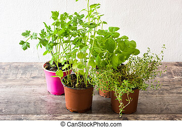Pots with aromatic herbs on wooden table