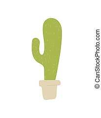 potted cactus plant isolated on white background