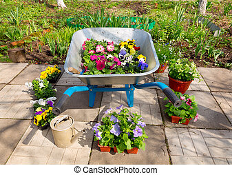 potted fleurit, outils, jardin, brouette